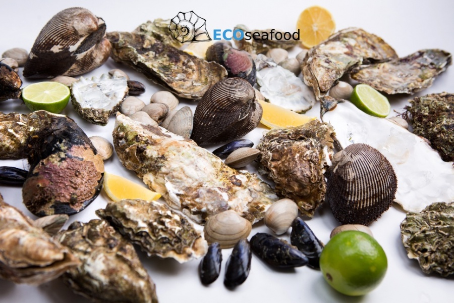 ECOSEAFOOD